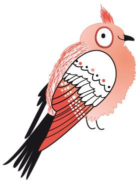 perruche les oiseaux de Paris